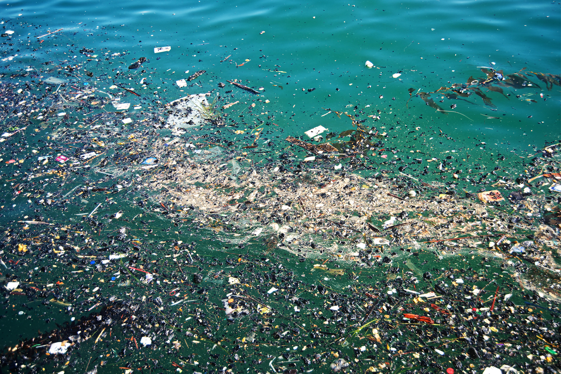 FACT CHECK The Great Pacific Garbage Patch  snopescom